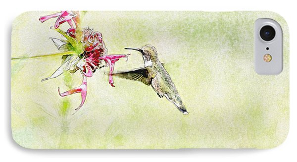 Humming Bird And Flower IPhone Case by David Stasiak