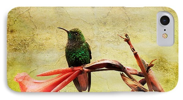 IPhone Case featuring the photograph Hummingbird 1 by Teresa Zieba