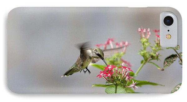Hummingbird And Penta IPhone Case by Robert Camp