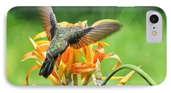 IPhone Case featuring the photograph Hummingbird At Lunchtime by David Perry Lawrence