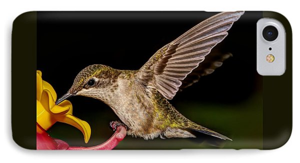 Ruby Throated Hummingbird IPhone Case by Brian Caldwell