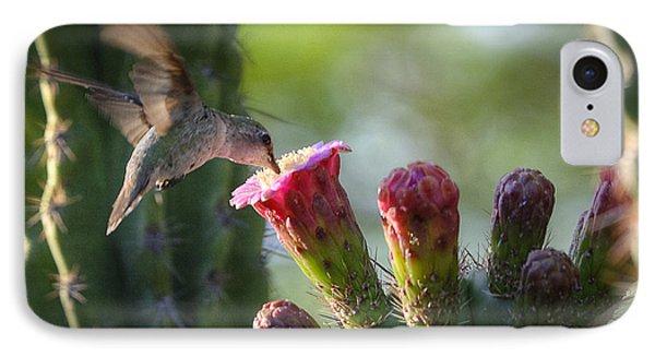 Hummingbird Breakfast Southwest Style  IPhone Case