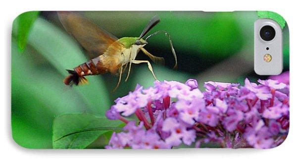 Hummingbird Clearwing Moth Phone Case by Gary Keesler