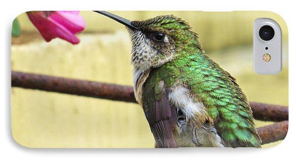 Hummingbird Details 4 IPhone Case by Judy Via-Wolff