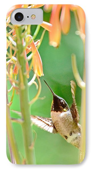 Hummingbird Dreams As Beating To Aloe Blossoms IPhone Case by Wayne Nielsen
