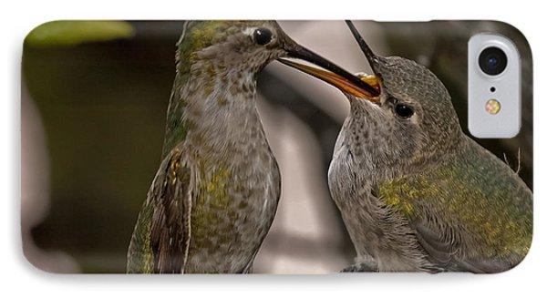 Hummingbird Feeding Baby IPhone Case