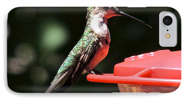 IPhone Case featuring the photograph Hummingbird Feeding by Eve Spring