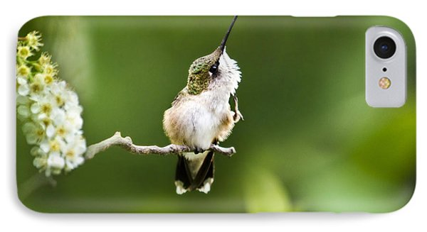 IPhone Case featuring the photograph Hummingbird Flexibility by Christina Rollo