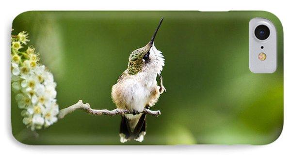 Hummingbird Flexibility IPhone Case by Christina Rollo