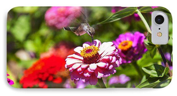 Garden iPhone 7 Case - Hummingbird Flight by Garry Gay
