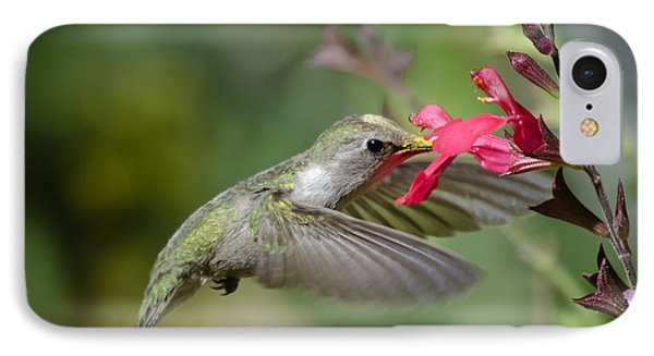 Hummingbird Heaven  Phone Case by Saija  Lehtonen
