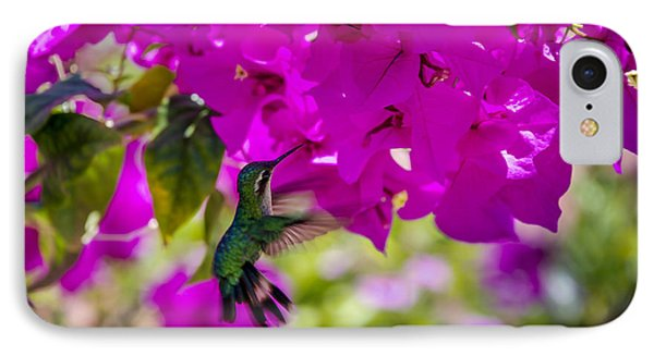 IPhone Case featuring the photograph Hummingbird In A Garden Paradise by Phil Abrams