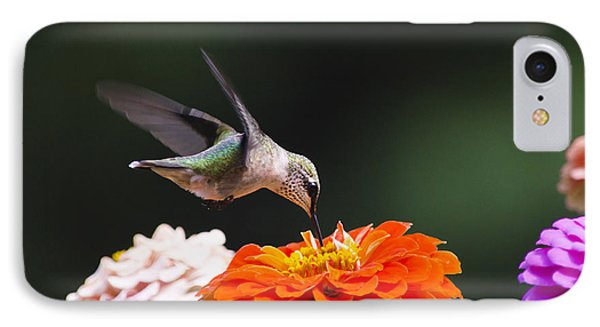 Hummingbird In Flight With Orange Zinnia Flower Phone Case by Christina Rollo