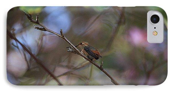 Hummingbird IPhone Case by Kevin Ashley