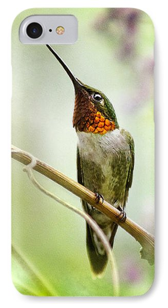 Hummingbird Looking For Love IPhone Case