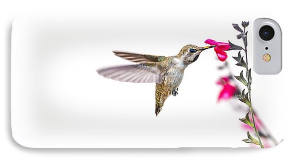 Hummingbird IPhone Case by Micah Morton