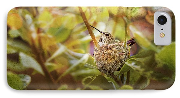 Hummingbird Mom In Nest Phone Case by Angela A Stanton