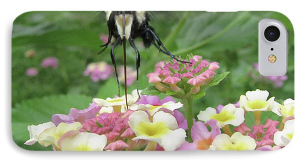 IPhone Case featuring the photograph Hummingbird Moth by Donna Brown
