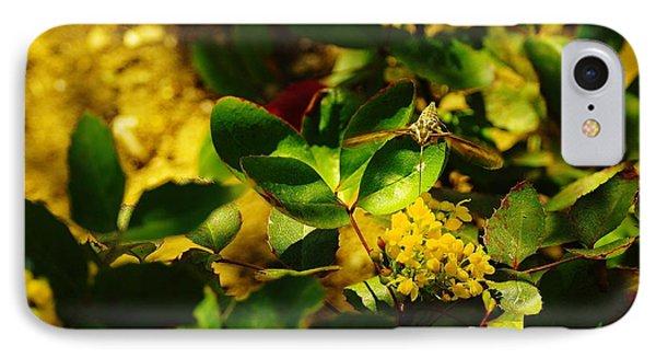 Hummingbird Moth Phone Case by Jeff Swan