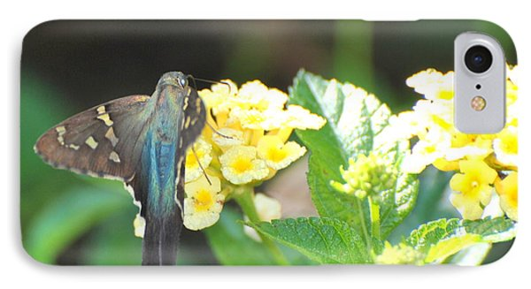 IPhone Case featuring the photograph Hummingbird Moth On Yellow Flowers by Jodi Terracina