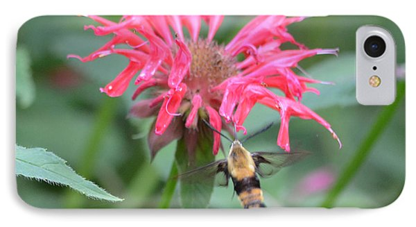 Hummingbird Moth Phone Case by Richard Bryce and Family