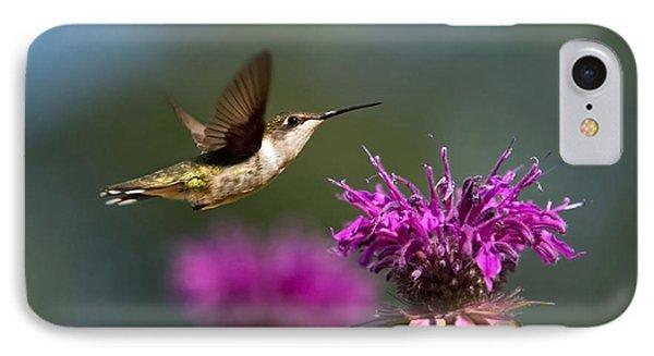 Hummingbird Moving Along Phone Case by Christina Rollo