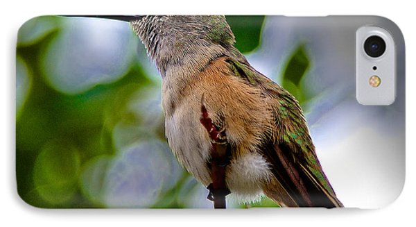 Hummingbird On A Branch IPhone Case by Stephen  Johnson
