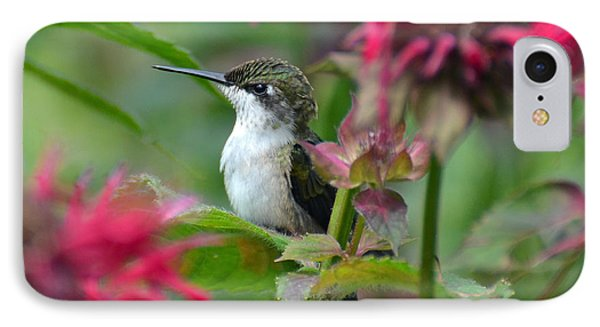IPhone Case featuring the photograph Hummingbird On A Leaf by Rodney Campbell