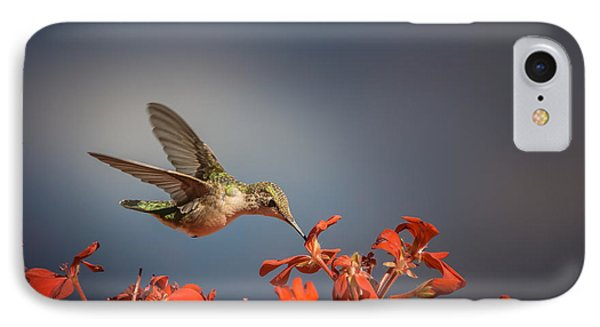 Hummingbird Or My Summer Visitor IPhone Case by Jola Martysz