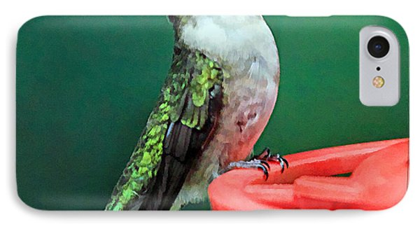 Hummingbird Perched On Feeder IPhone Case by Geraldine Scull