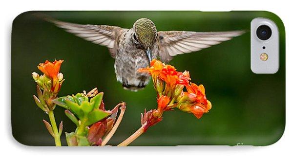 Hummingbird IPhone Case by Peter Dang