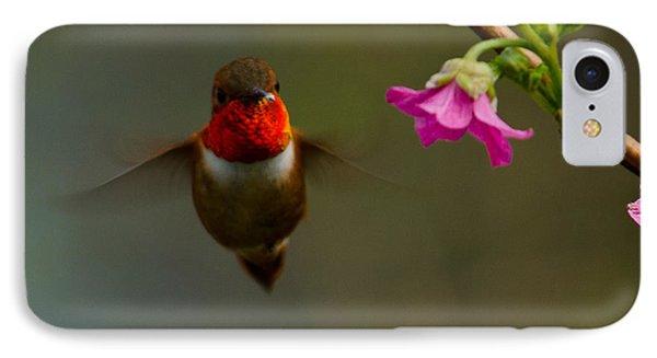 Hummingbird IPhone Case by Tikvah's Hope