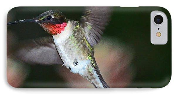 Hummingbird Ruby Throat And Bee Vie Aloe IPhone Case by Wayne Nielsen