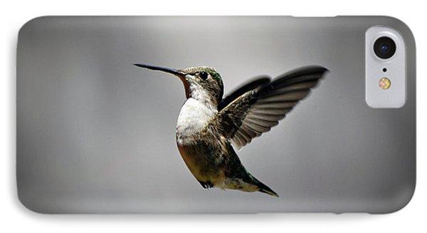 Hummingbird IPhone Case by Savannah Gibbs