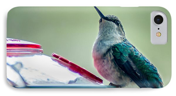 Hummingbird IPhone Case by Todd Soderstrom