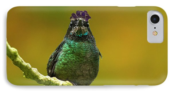Hummingbird With A Lilac Crown IPhone Case by Heiko Koehrer-Wagner
