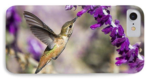 Hummingbird Collecting Nectar IPhone Case by David Millenheft