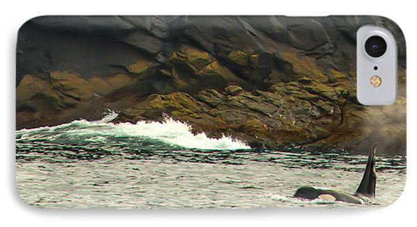 Humpback Whale Phone Case by Debra  Miller