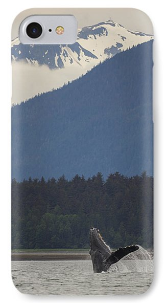Humpback Whale In Alaska 73a6815  IPhone Case by David Orias