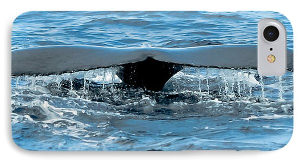 Humpback Whale Tail Off Bermuda Phone Case by Jeff at JSJ Photography
