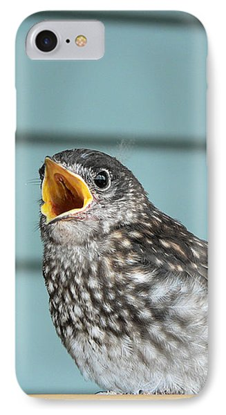 Hungry Baby Bluebird  IPhone Case