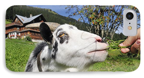 Hungry Goat Phone Case by Matthias Hauser