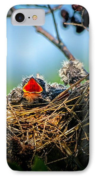 Hungry Tree Swallow Fledgling In Nest Phone Case by Bob Orsillo