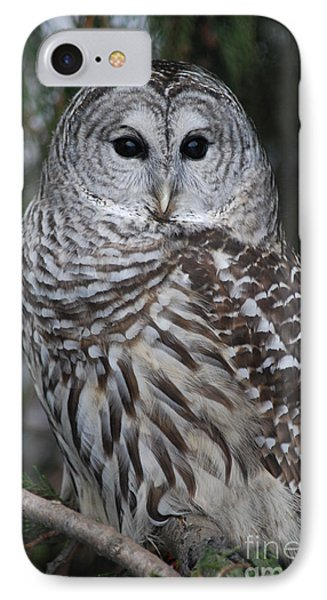 IPhone Case featuring the photograph Hunter by Sharon Elliott