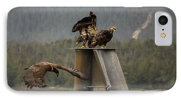 IPhone Case featuring the photograph Hunting For Lunch by Timothy Latta