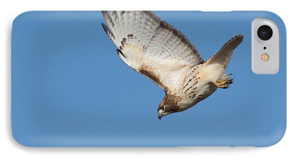 Hunting Hawk IPhone Case