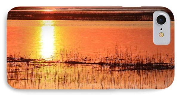 Hunting Island Tidal Marsh Phone Case by Michael Weeks