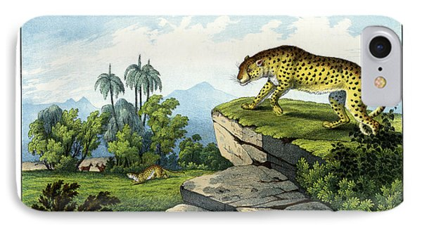 Hunting Leopard IPhone Case by Splendid Art Prints