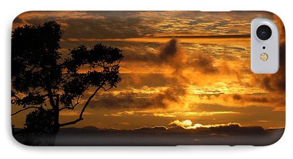 IPhone Case featuring the photograph Huntington Beach Sunset by Matt Harang