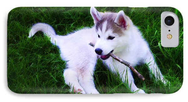 Huskie Pup Playing Fetch Phone Case by Bill Cannon